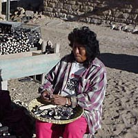 Hopi woman takes seed from blue corn for next year's crop