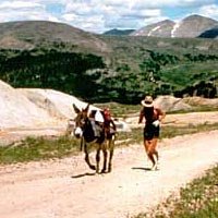 Leadville Boom Days International Pack Burro Race