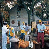 Lions Club Pumpkin Sale in Somers