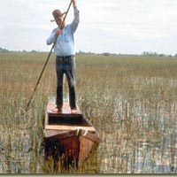 Glenn Simmons poling glades skiff he made through Everglades, July 1985