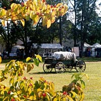 Scene from Cotton Pickin' Fair