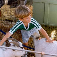 Petting zoo at Cider Days Fall Festival, 1992