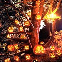 Jack o' lantern display in Carbuncle Pond Park