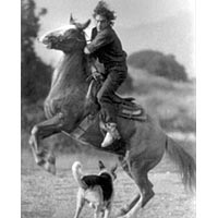 Rider on horse with dog