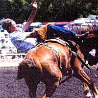 Clint Sweet on buckin' bronc, mid 1990s