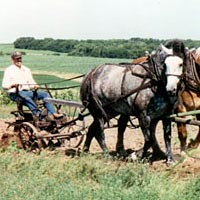 Plowing with draft horses, Deer Creek Sodbusters Show, August 1995