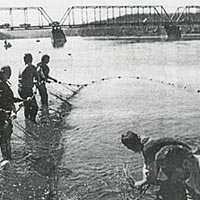 Shad hauling demo using old method of seining