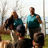 Live bird program educates visitors at the 1999 Festival