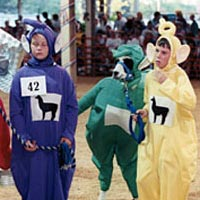 Kids and their llamas dress up for the annual Llama Costume Contest