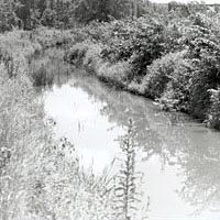 Trace of the old canal in Greenville