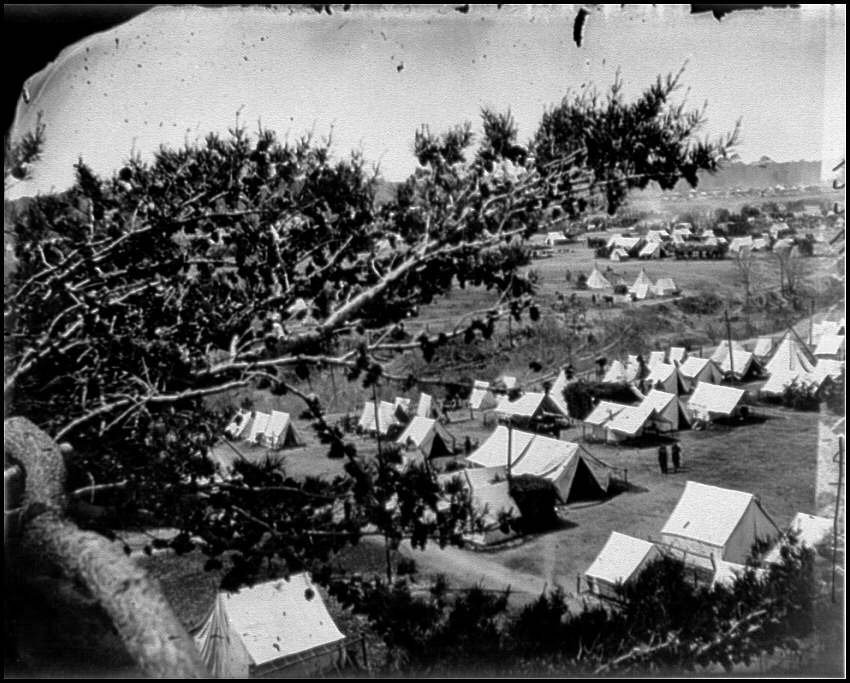 [Cumberland Landing, Va. Federal encampment; view from tree]