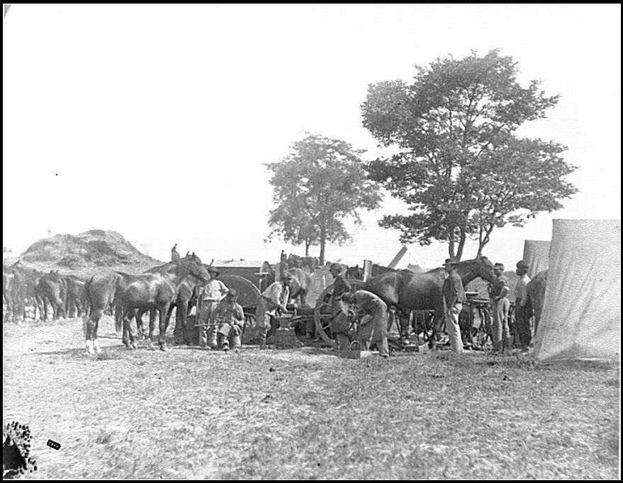 [Antietam, Md. Blacksmith shoeing horses at headquarters, Army of the Potomac]