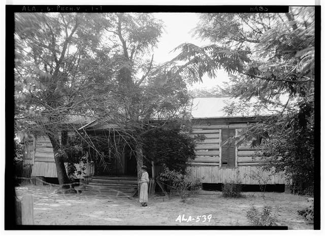 1.  Historic American Buildings Survey W. N. Manning, Photographer, July 17, 1935. FRONT VIEW - Octavia Adkinson House, Wilson Road, Peachburg, Bullock County, AL