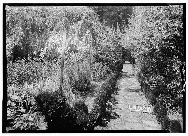 15.  Historic American Buildings Survey Alex Bush, Photographer, August 5, 1935 VIEW IN NEW GARDEN, TOWARD NORTH WEST - General Joseph Wheeler House (Later House), State Highway 20, Wheeler, Lawrence County, AL