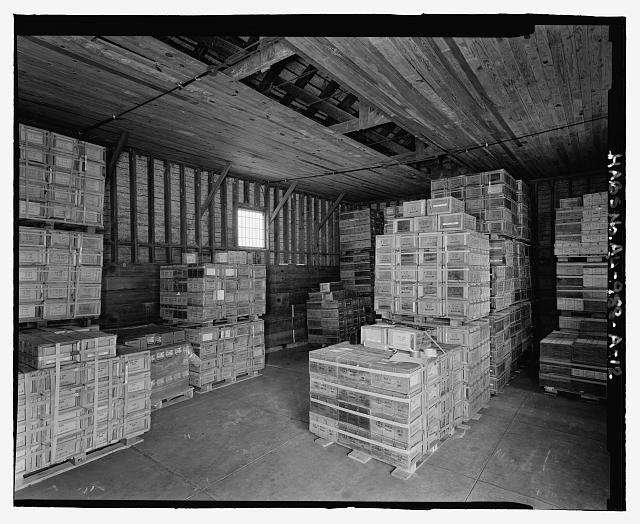 Interior view of northwest corner, view towards the northwest with scale - Fort McClellan Ammunition Storage Area, Building No. 4403, Second Avenue (Magazine Road), Anniston, Calhoun County, AL