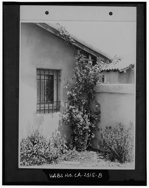 8.  COURTYARD WALL AND WINDOW. UNIDENTIFIED. - Rancho Santa Fe, Rancho Santa Fe, San Diego County, CA