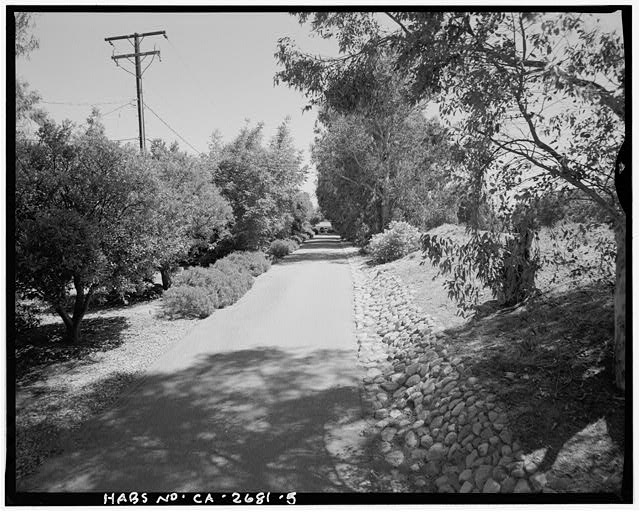 "View of driveway with orchard on left, facing toward Goerlitz House.  Camera facing 164"" south-southeast. - Goerlitz House, 9893 Highland Avenue, Rancho Cucamonga, San Bernardino County, CA"