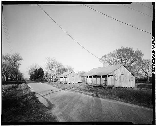 4.  View of row of Double Creole houses. - Laurel Valley Sugar Plantation, Double Creole Quarters, 2 Miles South of Thibodaux on State Route 308, Thibodaux, Lafourche Parish, LA
