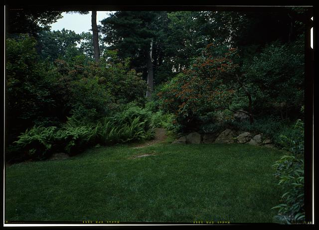 76.  VIEW LOOKING EAST FROM THE SOUTH LAWN INTO THE ROCK GARDEN PATH.  (DUPLICATE OF HABS No. MA-1168-47) - Fairsted, 99 Warren Street, Brookline, Norfolk County, MA