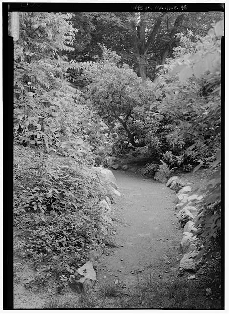 48.  VIEW LOOKING SOUTH ALONG THE ROCK GARDEN PATH.  (NOTE:  ROXBURY PUDDINGSTODE EDGING ALONG PATH). - Fairsted, 99 Warren Street, Brookline, Norfolk County, MA