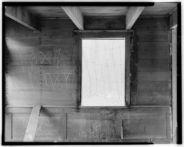 9.  (5 X 7 enlargement from 4 X 5 negative) FIRST FLOOR, WINDOW MOLDING ON SOUTH WALL LOOKING SOUTH - Sites Homestead, Monongahela National Forest (Tract 390) East of Route 28, Seneca Rocks, Pendleton County, WV