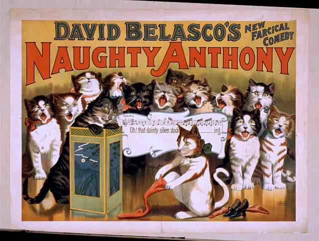 David Belasco's new farcical comedy, Naughty Anthony