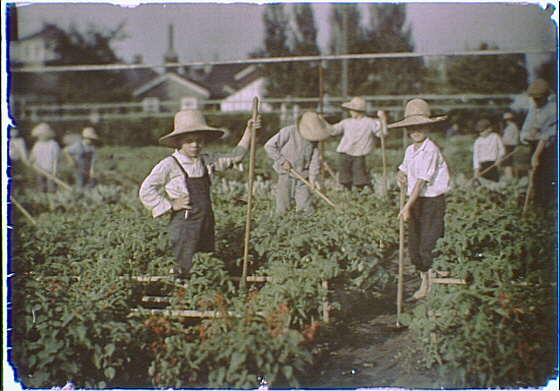 Children in the gardens of the National Cash Register Company, Dayton, Ohio