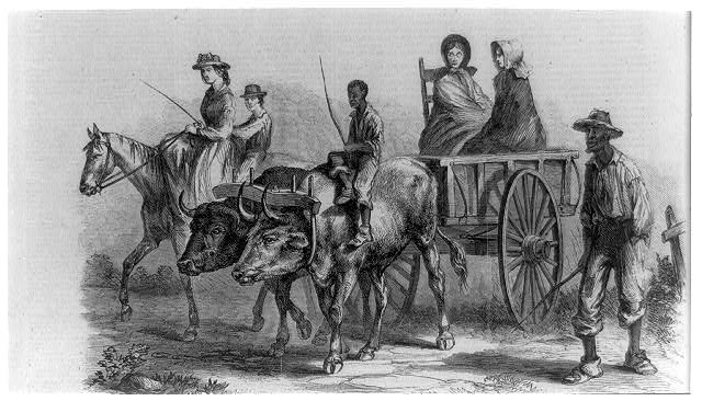 The war in Virginia - farmers' families on their way to the Union commissaries for food