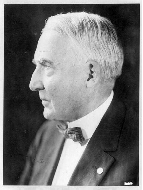 [Warren G. Harding, head-and-shoulders profile portrait]