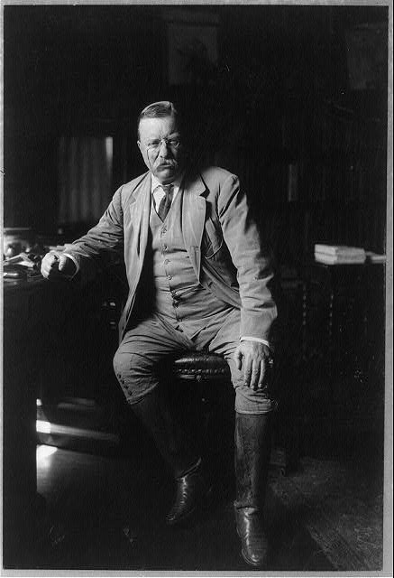Theodore Roosevelt in his library at Oyster Bay