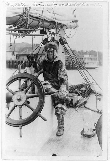 [Arctic explorer Donald MacMillan in fur suit at wheel of ship Bowdoin]