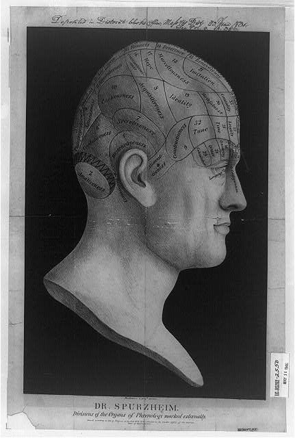 Dr. Spurzheim--divisions of the organs of phrenology marked externally