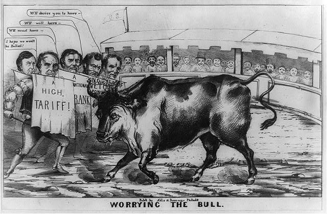 Worrying the bull