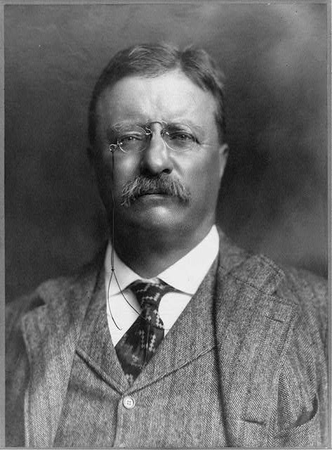 [Theodore Roosevelt, head-and-shoulders portrait, facing front]