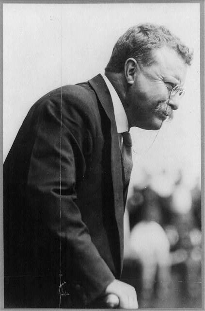 [Theodore Roosevelt, half-length portrait, turned right]