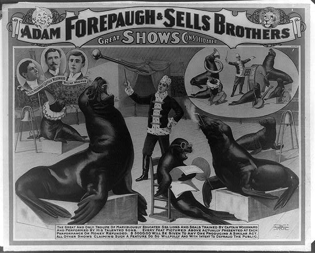 Adam Forepaugh &amp; Sells Brothers great shows consolidated