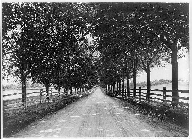 Lover's Lane, Cornwall, Pa. -- a typical road
