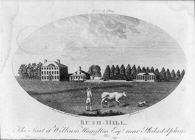 Bush-Hill, the seat of William Hamilton Esqr. near Philadelphia