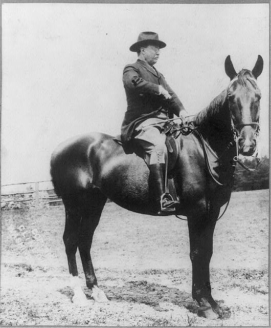 [Theodore Roosevelt on horseback]
