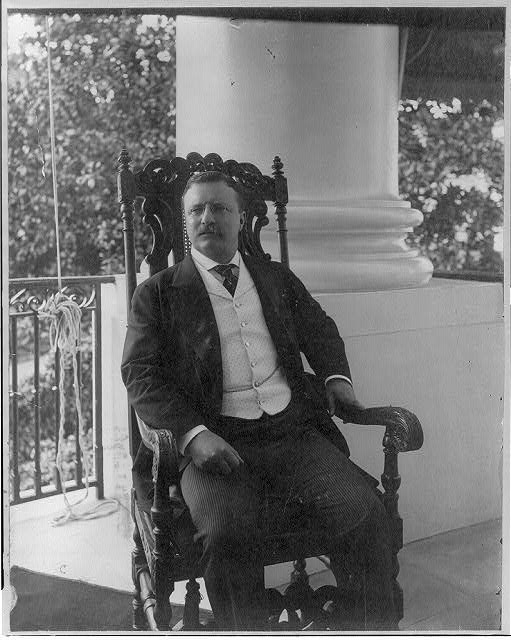 [Theodore Roosevelt, three-quarters length portrait, seated, facing slightly left]