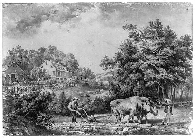 American farm scenes: No. 1