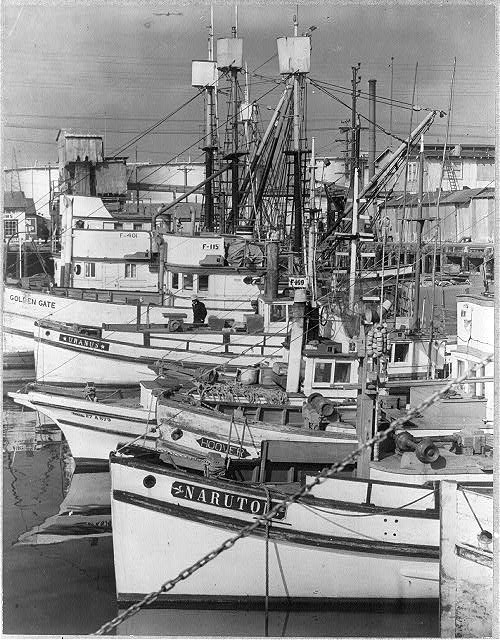Calif., San Pedro, Apr. 1942 - Evacuation of Japanese-Americans to relocation authority centers - part of fleet of fishing boats tied up at Terminal Island, owned by Japanese-Americans