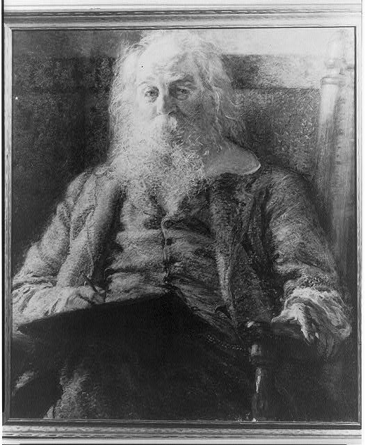 [Walt Whitman, 1819-1892, half-length portrait, seated, facing left]