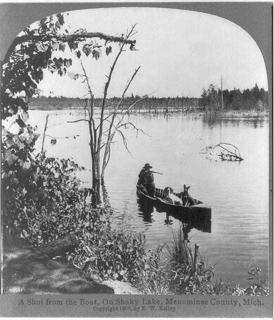 [Hunting from a canoe (with 2 dogs) on Shaky Lake, Menominee County, Mich.]