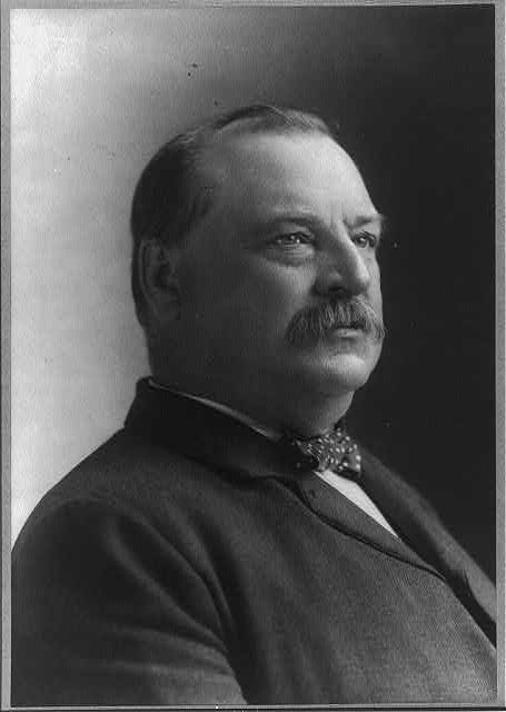 [Grover Cleveland, 1837-1908, bust portrait, facing right]
