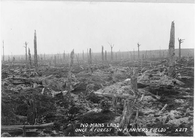 "No Man's Land - once a a forest in ""Flander's Fields"""
