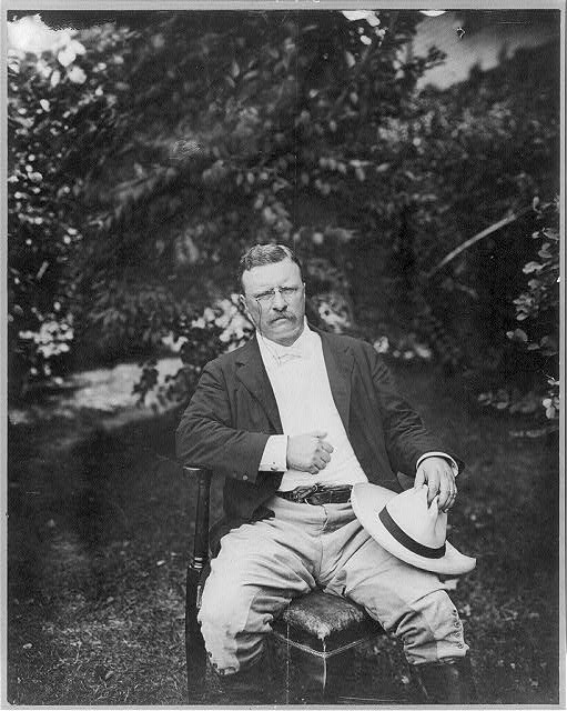 [Theodore Roosevelt, three-quarter length portrait, outdoors, seated in a chair, facing front]