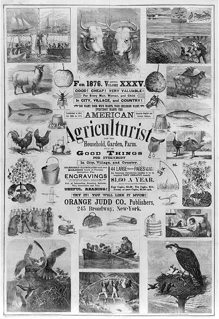 American agriculturist. Good things for everybody