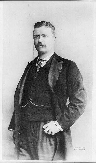 [Portrait of Theodore Roosevelt]