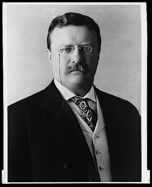 [Theodore Roosevelt, three quarter length portrait, facing front]